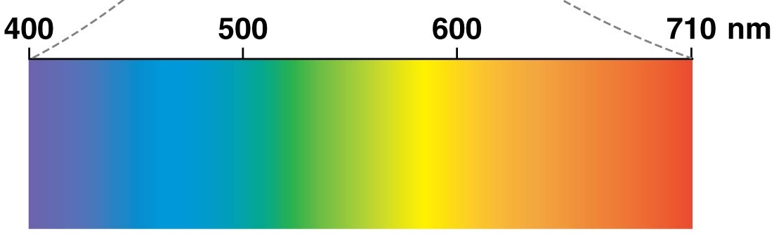 Visible spectrum in color